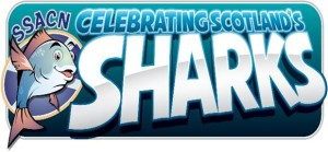 Celebrating Scotland's Sharks
